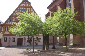 martin-luther-platz-bad-windsheim