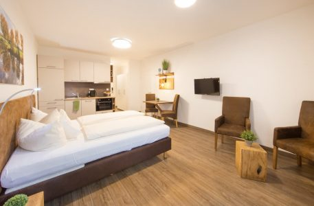 hotel-spaeth-apartment-ohne-balkonn-5